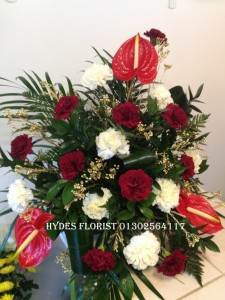 anthurium christmas arrangement £70 must be ordered